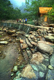 Stream embankment Royalty Free Stock Photo