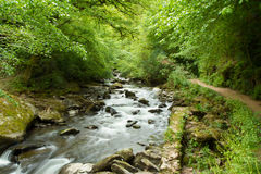 Stream in English countryside. Near Lynmouth North Devon England UK Stock Photo