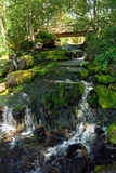 Stream fall. Vegetation and footbridge Royalty Free Stock Photography