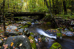 Stream in Fall at Smoky Mountain National Park Stock Image