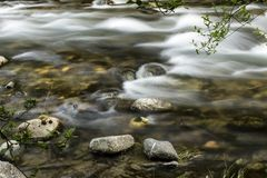 Stream of fast river Stock Photos