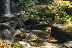 Stream of fast river Stock Photography