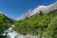 Stream in Ferret valley Stock Photos
