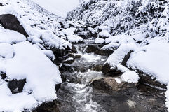 Stream and first snow Royalty Free Stock Images