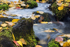 Stream flow between mossy rocks to lake Royalty Free Stock Photos