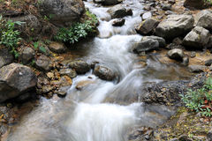 Stream flowing. In over rocks Royalty Free Stock Image