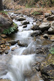 Stream flowing. In over rocks Royalty Free Stock Photography