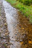Water burble through an unpaved road after rain Stock Images