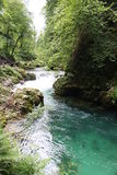 Stream flowing through the Blejski vintgar gorge in the forest, Slovenia.  Royalty Free Stock Photography
