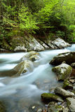 Stream flowing through boulders. Stock Photo