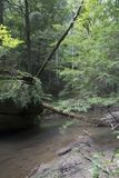 Stream flowing by boulders stock image