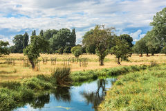 Stream flowing through English Countryside on summers day Royalty Free Stock Image