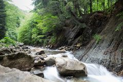 Stream flowing through the forest from the mountain slope. Big stone in the water royalty free stock photography