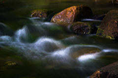 Stream flowing freshwater Royalty Free Stock Photo
