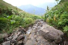 Stream flowing through the mountainous terrain. Mountain stream flowing through the mountainous terrain Stock Images