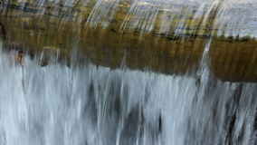 Stream Flowing Over a Log stock footage