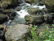 Stream flowing over the rocks. Big Island, Kapaau, Hawaii Stock Photo