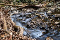 Stream flowing over rocks and branches. A small stream flows over rocks and branches at the base of Carpenter Falls Stock Photography