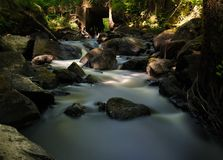 Stream Flowing Through Rocks in Forest Stock Photography