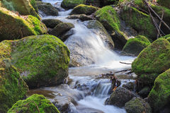 Stream flowing between the stones Royalty Free Stock Images
