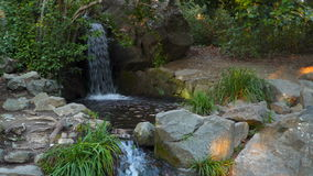 Stream flowing among stones. Sunny day stock video footage