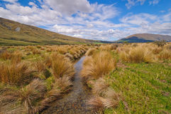 Stream flowing though a Mountain Meadow Stock Photo