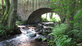 Stream flowing under the old stone bridge. Movie of the brook flowing under the old stone bridge stock footage
