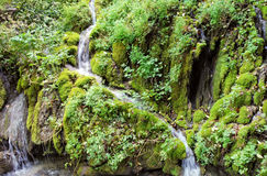 Stream flows into lake Garda from green mountain Stock Photos
