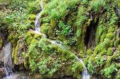 Stream flows into lake Garda from green mountain Stock Photos
