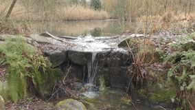 The stream flows from the lake on stones. London. England. United Kingdom. Stone is a small waterfall on the edge of the lake stock video footage