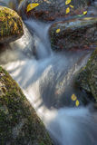 The stream flows through rocks. Autumn concept Stock Image