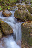 The stream flows through rocks. Close-up Monchique Stock Images
