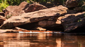 Stream Flows by Rocks into Shallow Pond in Tropical Forest stock footage