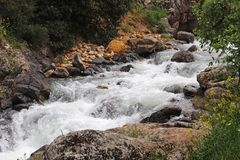 A stream flows between the rocks.  royalty free stock photos