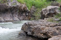 A stream flows between the rocks. And plants royalty free stock image