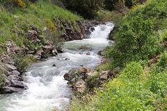 A stream flows between the rocks. From waterfall royalty free stock photo