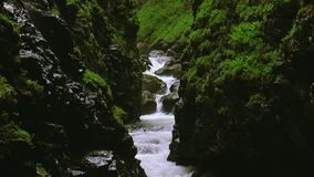 Stream flows between two mountains covered by lot greenery. Summer day. Landscape. Nature. Splash. Stream flows between two mountains covered by lot greenery stock video footage