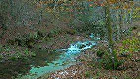 The stream flows stock video footage