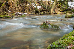 Stream flows in the winter forest Stock Photography