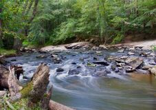 Stream in a Forest With Grey Rocks Royalty Free Stock Image
