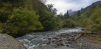 Stream in forest landscape. Mountain background at changpinggou, siguniang mountain , China. windy day Stock Photography