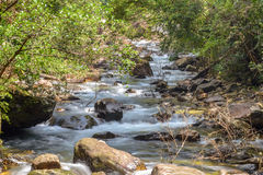 Stream in forest, Nature rill flow. Thailand Royalty Free Stock Photo