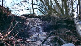 Stream forest river dry trees waterfall landscape motion video. Stream  forest river dry trees waterfall landscape motion video stock video footage