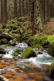 The stream Stock Photo