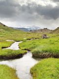 Stream in fresh green Alps meadow, snowy peaks of Alps in background Stock Photos