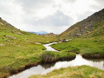 Stream in fresh green Alps meadow, snowy peaks of Alps in background Stock Photo