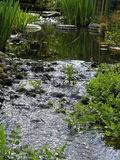 Stream in garden. Garden with old water mill weel and small stream running through royalty free stock photo