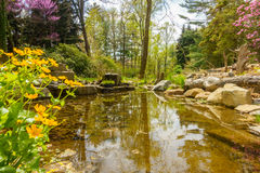 Stream in garden. Fresh water stream running  through a garden Royalty Free Stock Photography