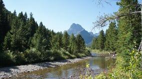 A stream in Glacier National Park. Stock Photo
