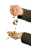 Stream of golden coins. Golden coin flowing from one hand to the other of a business woman - isolated on white Stock Photography